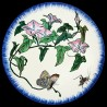 Majolica dessert plate bindweed, butterfly and grasshopper
