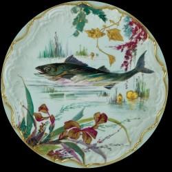 Collection Poissons de Rivière Sandre