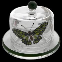 Beurrier individuel 7,5 cm décor papillons et fourmis