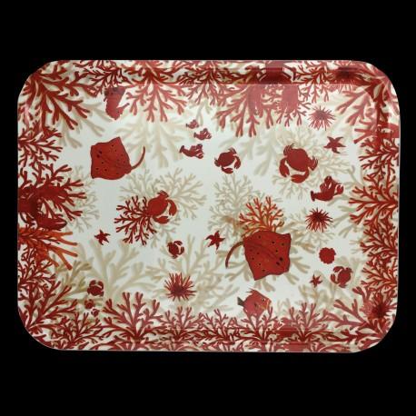 Plateau Nemo GM 43 x 33 cm