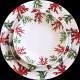 Porcelain dinner plate Red Coral