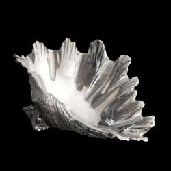 Silver plated Shell salt cellar